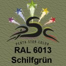 Lederfarbspray Schilfgrün 150 ml RAL 6013