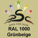 Lederfarbspray Grünbeige 400 ml RAL 1000