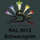 Lederfarbspray Schwarzgrün 400 ml RAL 6012