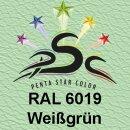Lederfarbspray Weißgrün 400 ml RAL 6019