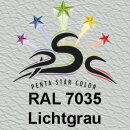 Lederfarbspray Lichtgrau 400 ml RAL 7035